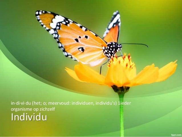 Individu in·di·vi·du (het; o; meervoud: individuen, individu's) 1ieder organisme op zichzelf