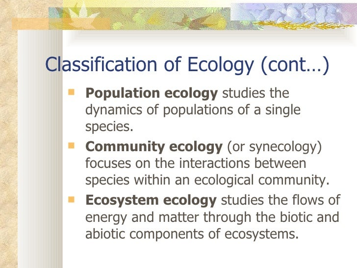 what is synecology