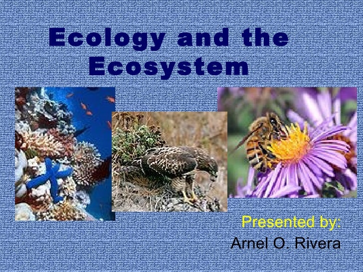 Ecology and the Ecosystem Presented by: Arnel O. Rivera