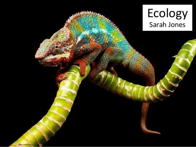 Ecology  Sarah Jones  hdw.eweb4.com