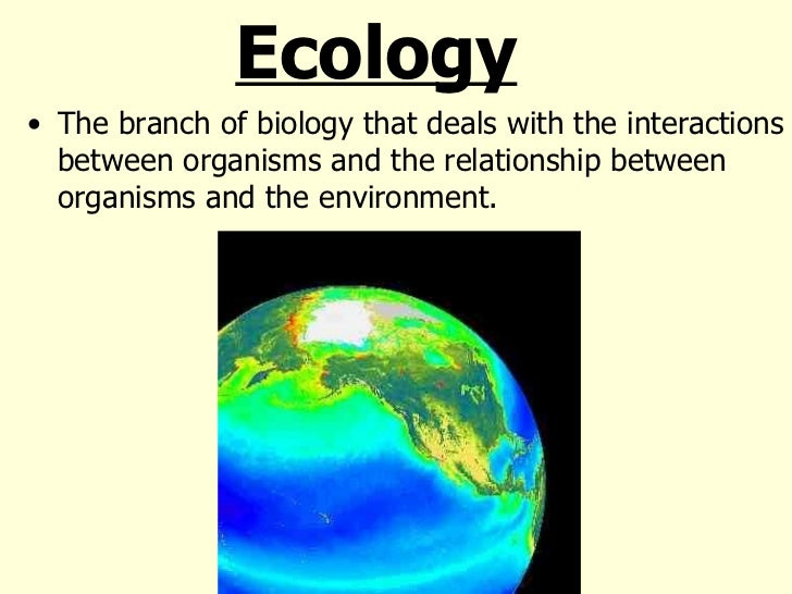 what is the relationship between ecology evolution and genetics