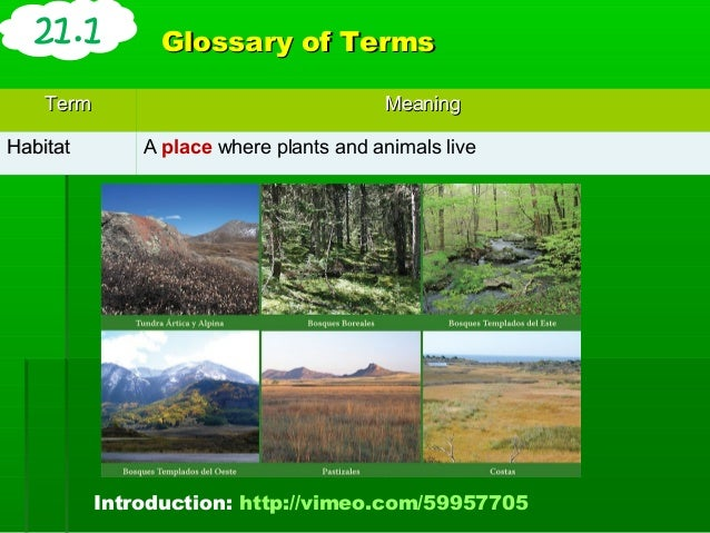 an overview of ecology the study of plants animals and the environment No, organisms are not separated from their environment or from other  the  study of the biosphere is part of ecology, the study of how living  a biome is a  large community of plants and animals that live in the same place.