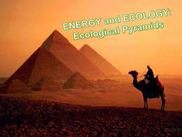 ENERGY and ECOLOGY:<br />Ecological Pyramids<br />