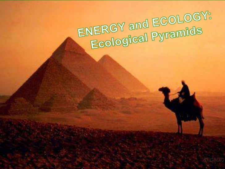 Productivity of   Ecosystems Energy is the currency of  ecosystem Most energy is reflected back into  space or is absorb...