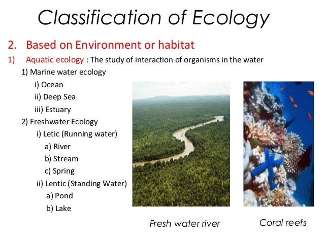 an analysis of the habitat marine ecology and the study of interactions of marine organisms Like biology, marine biology has many, diverse fields of study contained within it including the study of the molecules within cells (molecular biology), the functions and adaptations of organisms (physiology), and populations of organisms and their interactions with each other and their environment (ecology) what unites.