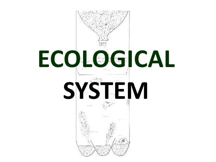 ECOLOGICAL  SYSTEM