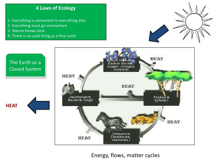 Nature Knows Best Laws Of Ecology