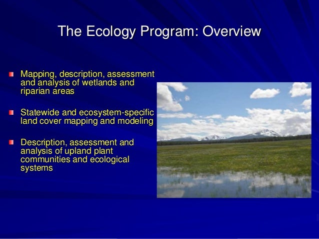 The Ecology Program: Overview Mapping, description, assessment and analysis of wetlands and riparian areas Statewide and e...