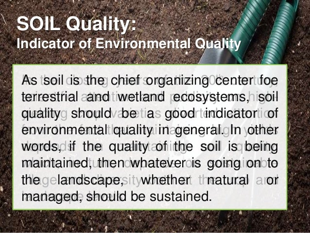 Soil organizing component for terrestrial ecosystem for Soil quality indicators