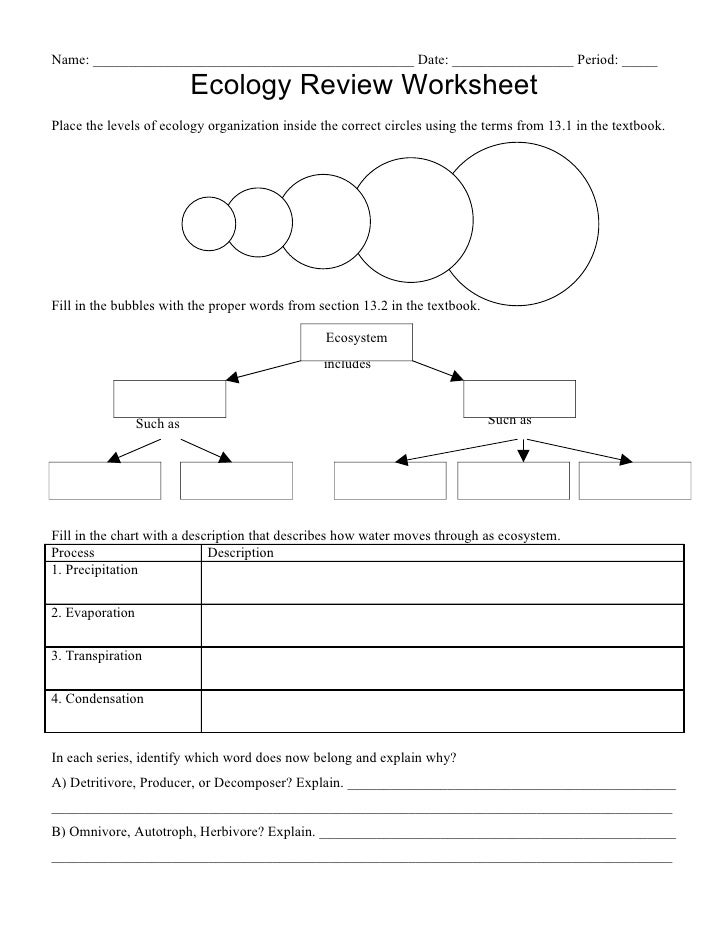 Ecology Worksheet - andrewgarfieldsource