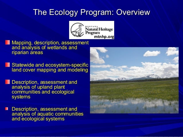 The Ecology Program: OverviewThe Ecology Program: Overview Mapping, description, assessment and analysis of wetlands and r...