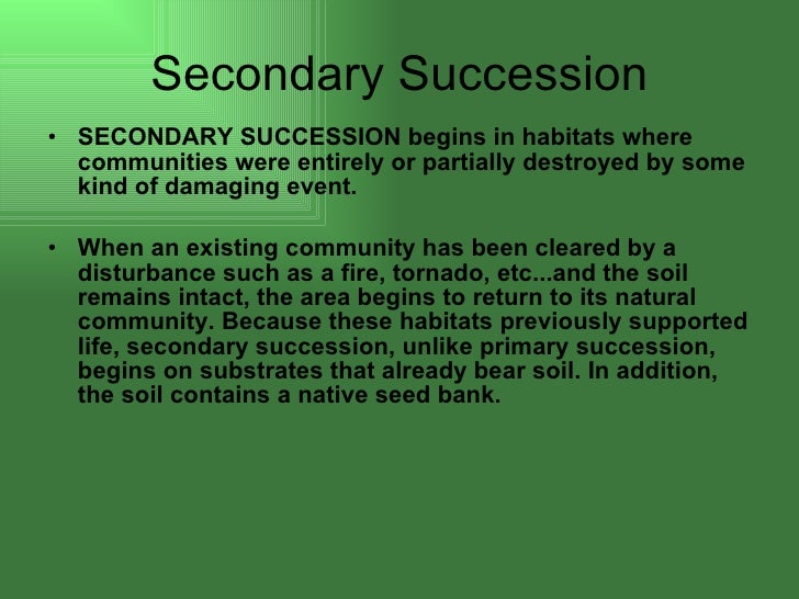 environmental succession definition