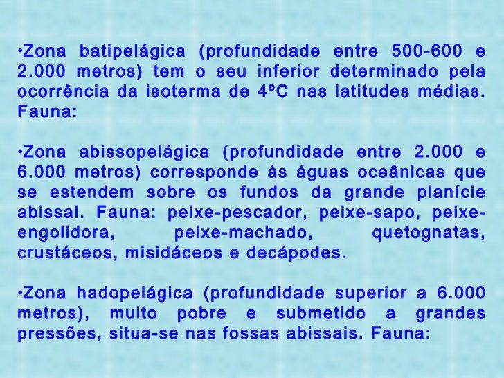 <ul><li>Zona batipelágica (profundidade entre 500-600 e 2.000 metros) tem o seu inferior determinado pela ocorrência da is...