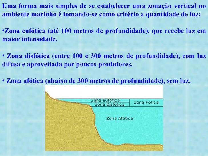 <ul><li>Uma forma mais simples de se estabelecer uma zonação vertical no ambiente marinho é tomando-se como critério a qua...