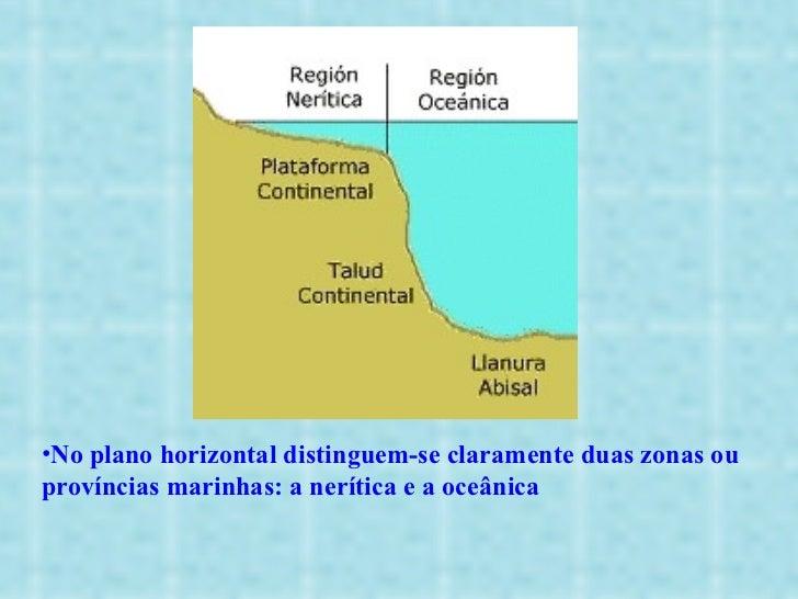 <ul><li>No plano horizontal distinguem-se claramente duas zonas ou províncias marinhas: a nerítica e a oceânica </li></ul>