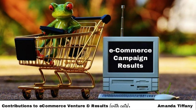 e-Commerce Campaign Results Contributions to eCommerce Venture & Results (with cats). Amanda Tiffany