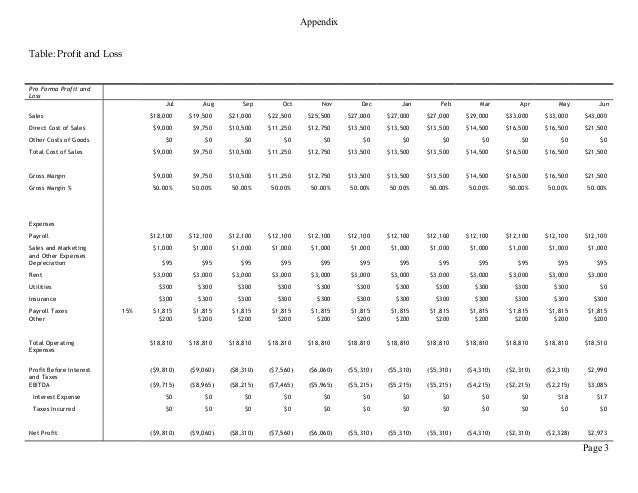 pro forma profit and loss