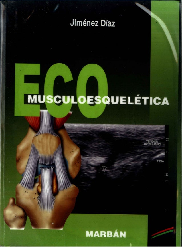 Eco musculoesqueletica (1)