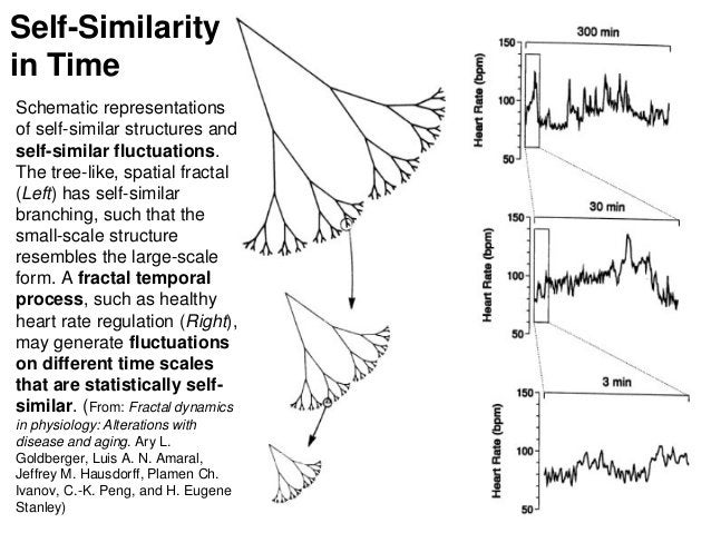 Self-Similarity in Time Schematic representations of self-similar structures and self-similar fluctuations. The tree-like,...