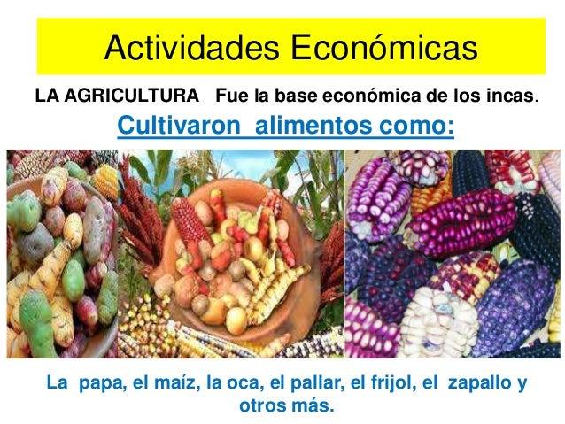 PRINCIPALES PRODUCTOS NATIVOS• La economía del Imperio se basó en la agriculturaconsistente en el cultivo de:• Maíz / haba...