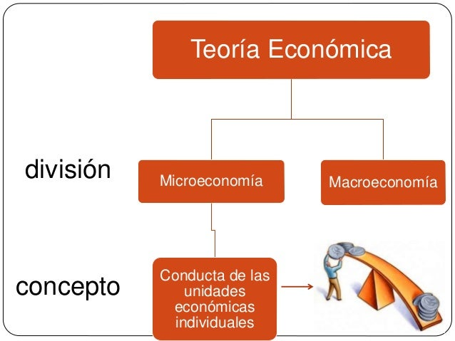 concepto división Teoría Económica Microeconomía Conducta de las unidades económicas individuales Macroeconomía