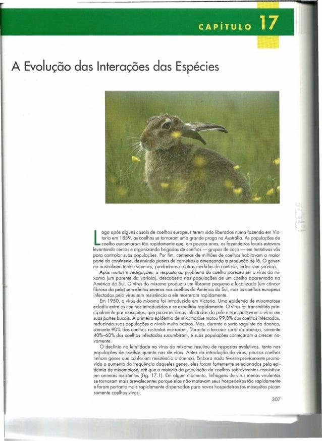 A Evolução das Interações das Espécies  L  OgO após alguns casais de coelhos europeus terem sido liberados numa fazenda em...