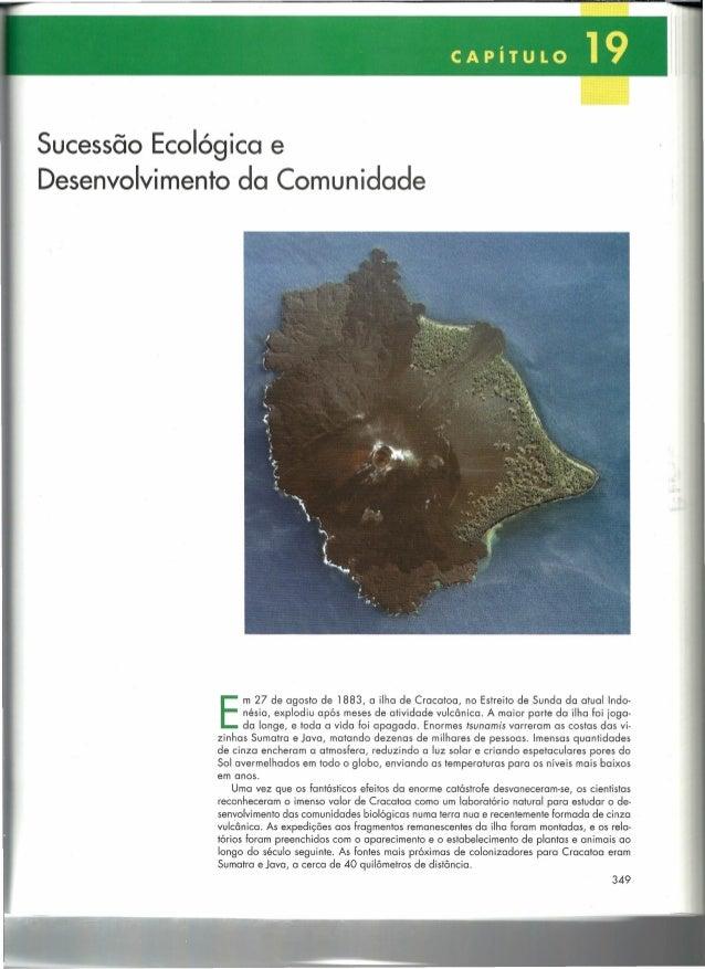 Sucessão Ecológica e Desenvolvimento da Comunidade  E  m 27 de agosto de 1883, a ilha de Cracatoa, no Estreito de Sunda da...