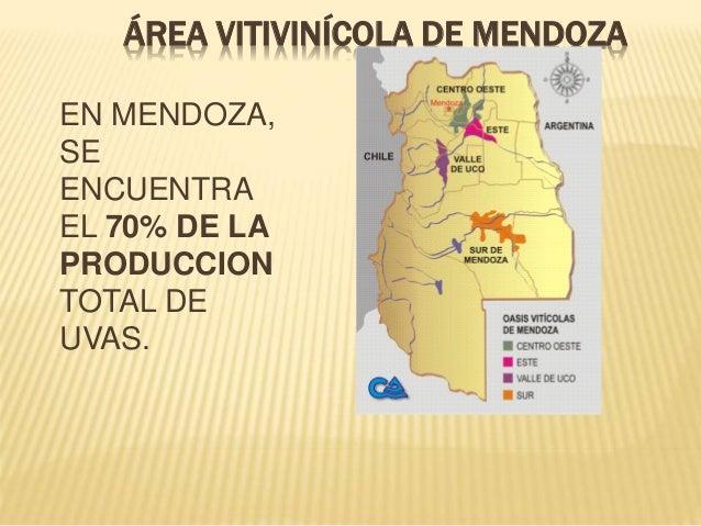Circuito Vitivinicola : Economías regionales vid