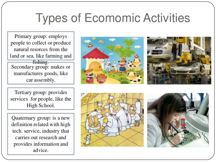 Types of economic activity essay example Homework Example