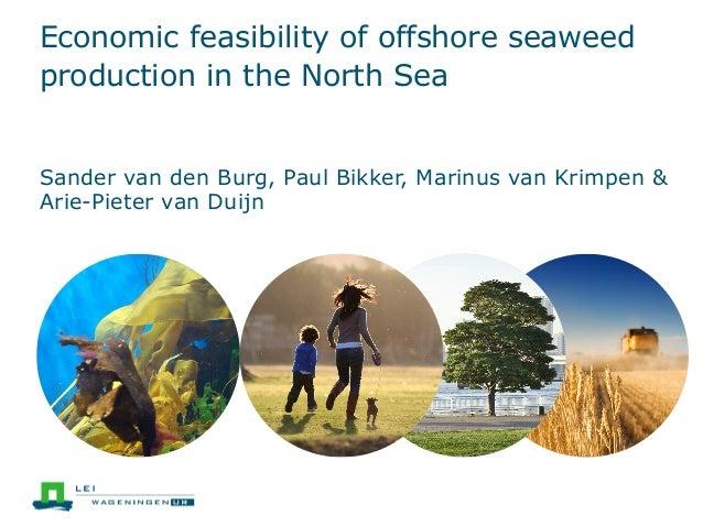 Economic feasibility of offshore seaweed production in the North Sea Sander van den Burg, Paul Bikker, Marinus van Krimpen...