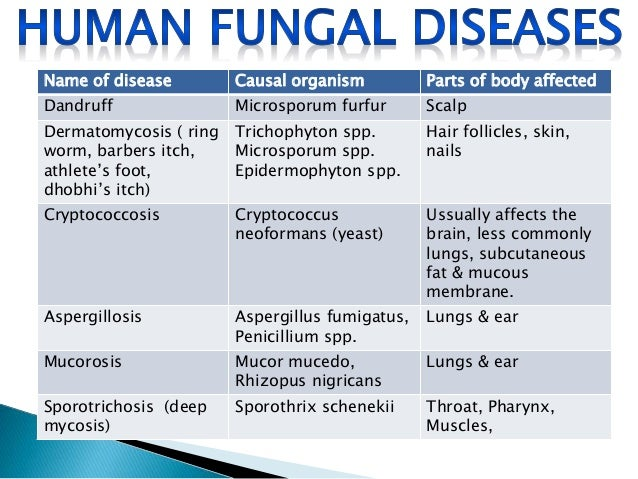 LIST OF FUNGAL DISEASES IN HUMANS EPUB