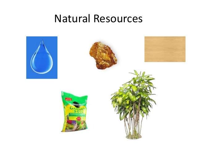 Economic resources (good)