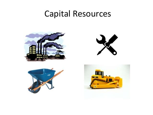 What Are Natural Human Capital Resources