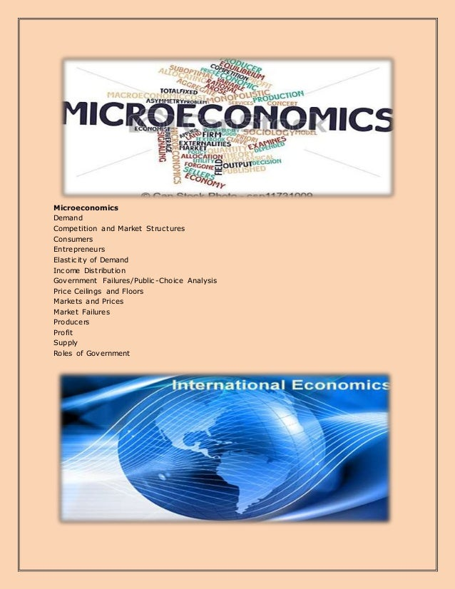 Microeconomics Demand Competition and Market Structures Consumers Entrepreneurs Elasticity of Demand Income Distribution G...