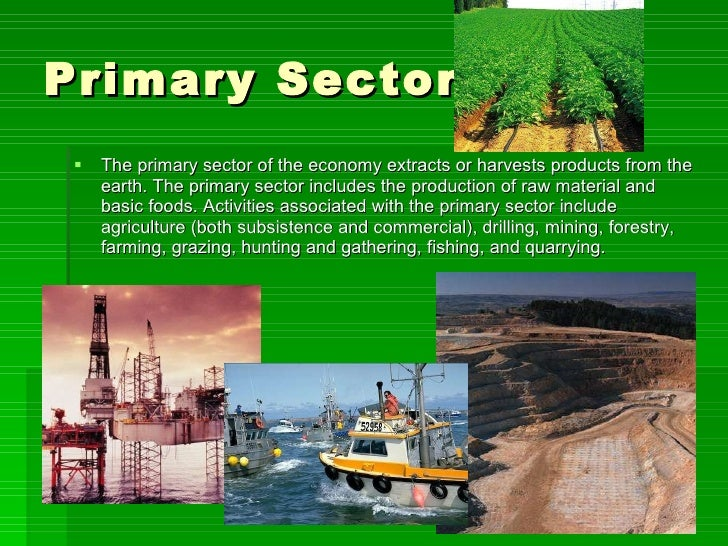 What Are Primary, Secondary & Tertiary Economic Sectors?