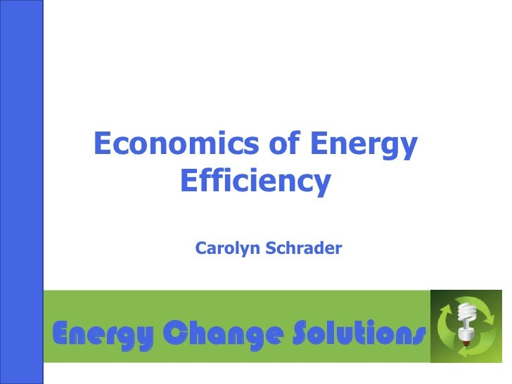 Economics of Energy Efficiency<br />Carolyn Schrader<br />Energy Change Solutions<br />