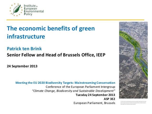 1Webinar series. Module 4. 7th June 2013 The economic benefits of green infrastructure Patrick ten Brink Senior Fellow and...