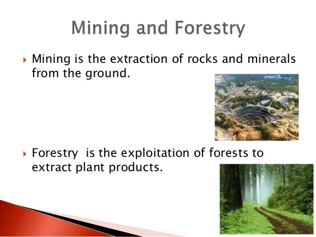 Mining is the extraction of rocks and minerals from the ground.  Forestry is the exploitation of forests to extract pla...