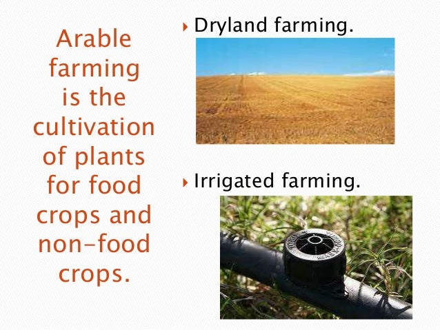 Arable farming is the cultivation of plants for food crops and non-food crops. Arable farming is the cultivation of plants...