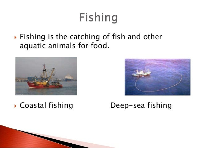  Fishing is the catching of fish and other aquatic animals for food.  Coastal fishing Deep-sea fishing