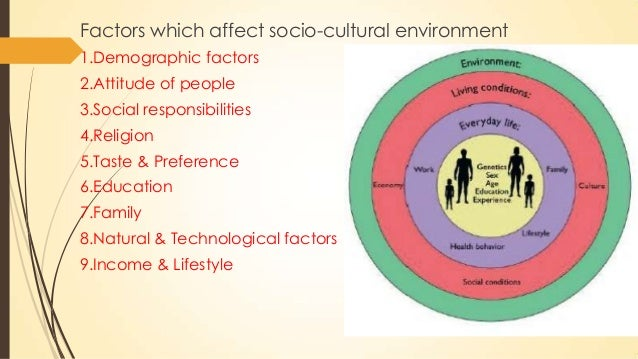 socio cultural environment of mcdonalds Socio-cultural environment is a collection of social factors affecting a business and includes social traditions, values and beliefs, level of literacy and education, the ethical standards and state of society, the extent of social stratification, conflict and cohesiveness, and so forth.