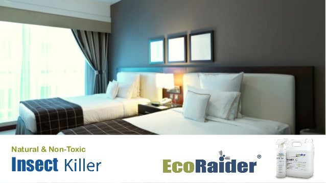 Ecoraider Professional Presentation 2015 Slide 2