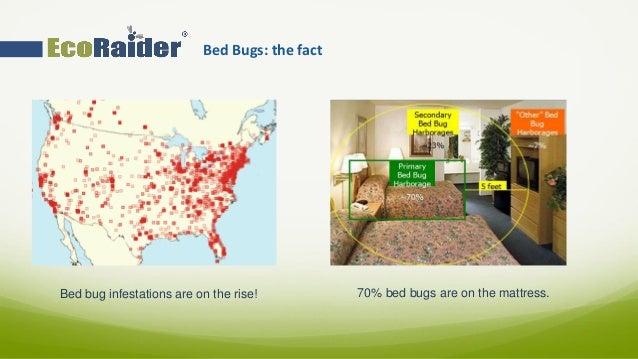 Ecoraider Professional Presentation 2015 Slide 3