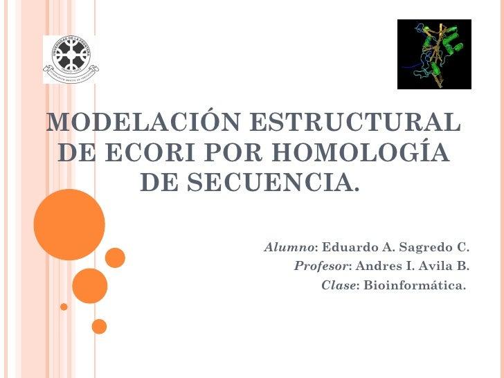 MODELACIÓN ESTRUCTURAL DE ECORI POR HOMOLOGÍA      DE SECUENCIA.             Alumno: Eduardo A. Sagredo C.                ...