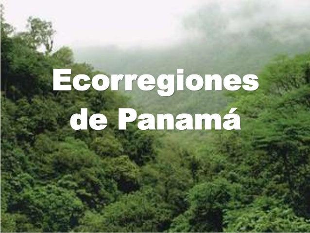 Ecorregiones de Panamá