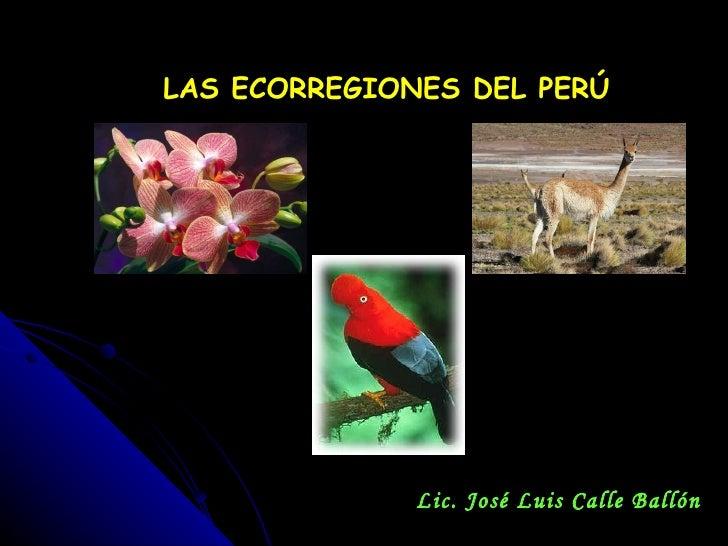 LAS ECORREGIONES DEL PERÚ Lic. José Luis Calle Ballón