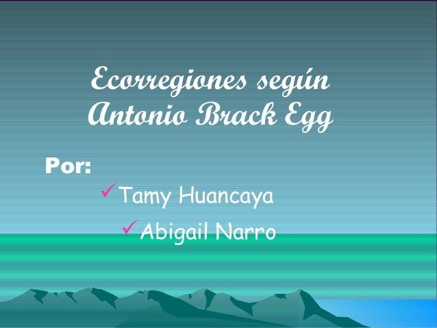 Ecorregiones según   Antonio Brack EggPor:       Tamy Huancaya        Abigail Narro