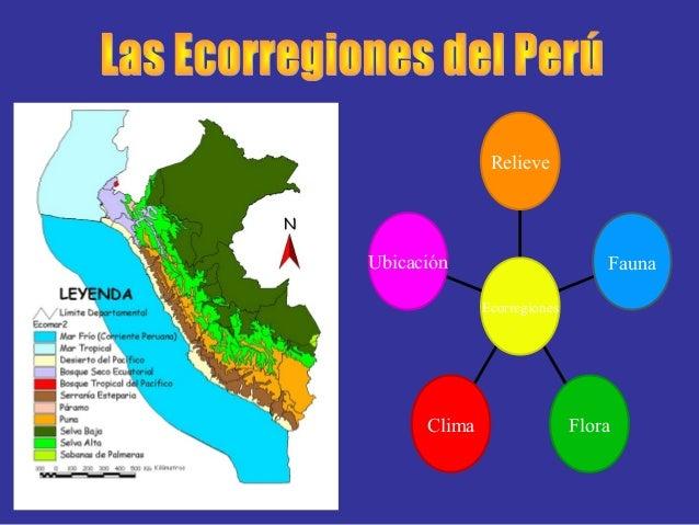 Imagenes De Maquetas De Ecorregiones Imagenes De Maquetas