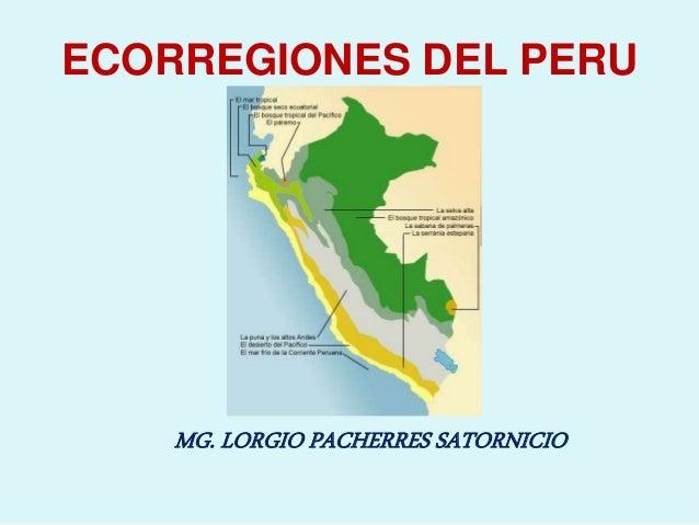 ECORREGIONES DEL PERU MG. LORGIO PACHERRES SATORNICIO