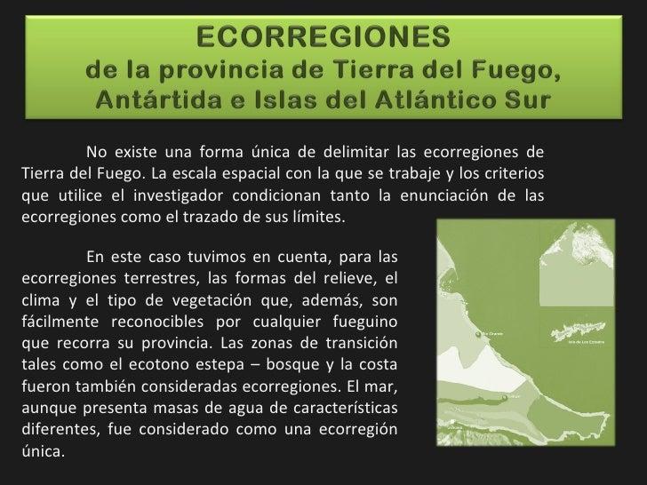 No existe una forma única de delimitar las ecorregiones de Tierra del Fuego. La escala espacial con la que se trabaje y lo...
